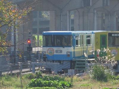Type1050blue_maruyama07