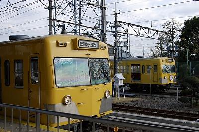 Seibutype101_shiraitodai2