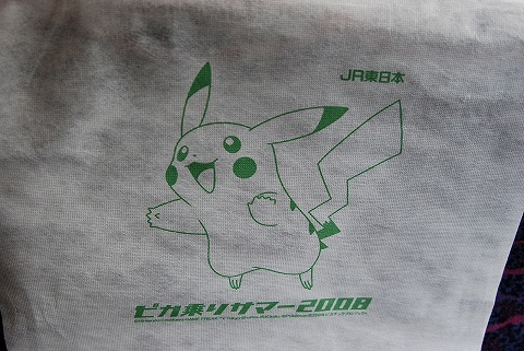 Seatcoverpokemon