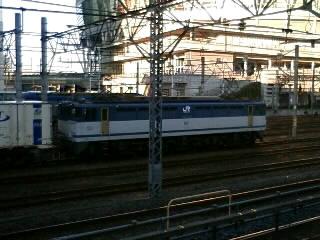 本日のカマ@さいたま新都心(1/15)
