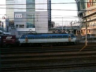 本日のカマ@さいたま新都心(1/27)