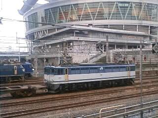 本日のカマ@さいたま新都心(1/28)