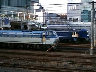 本日のカマ@さいたま新都心(2/10)