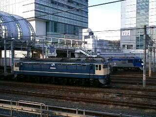 本日のカマ@さいたま新都心(2/18)
