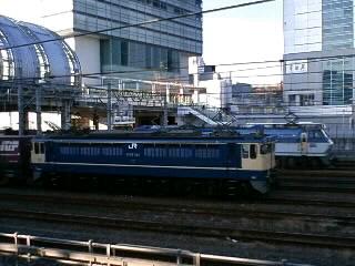 本日のカマ@さいたま新都心(2/19)