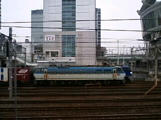 本日のカマ@さいたま新都心(2/24)