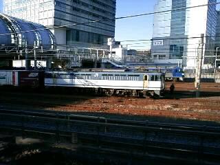 本日のカマ@さいたま新都心(3/12)