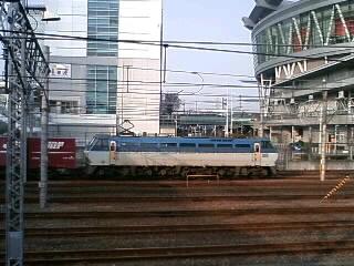 本日のカマ@さいたま新都心(3/17)