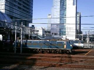 本日のカマ@さいたま新都心(3/23)