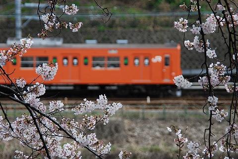 Type201_iidabashi0904
