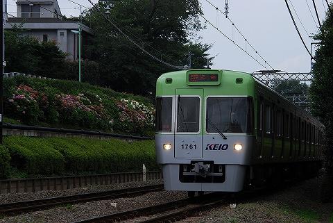 Keio1000_inokashirakoen09071