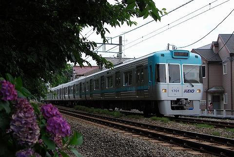 Keio1000_inokashirakoen09072