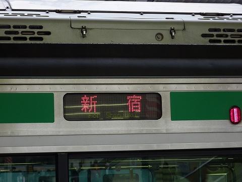 Forshinjyukue231
