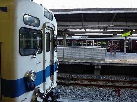 東武8000系&E231系@池袋