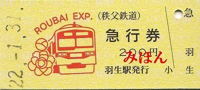 急行ロウバイ号急行券2010年