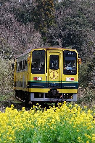 いすみ200型@城見ヶ丘'10.3.15-2
