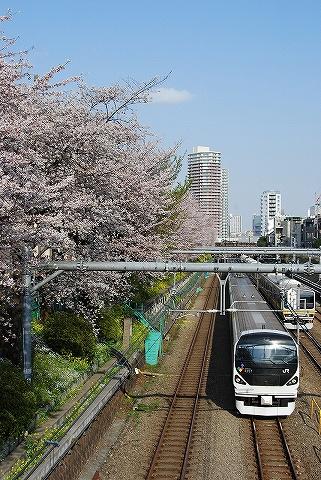 E257系@東中野'10.4.3