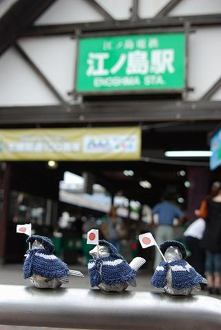 すずめ@江ノ島駅前