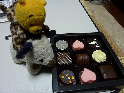 バレンタインチョコレート2011-1