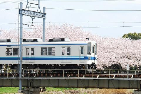 東武8000系@藤の牛島'11.4.10-3