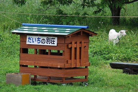 だいち@武蔵横手'11.6.5