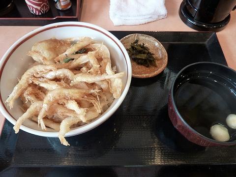 白えび天丼@白えび亭