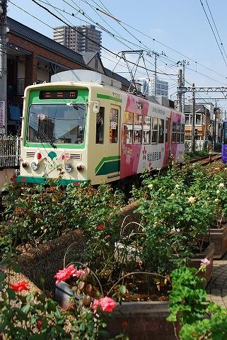 都電7000形@三ノ輪橋'11.10.10