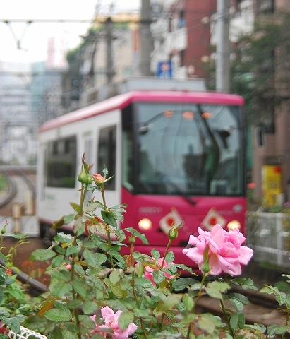 都電8800形@大塚駅前'11.10.10