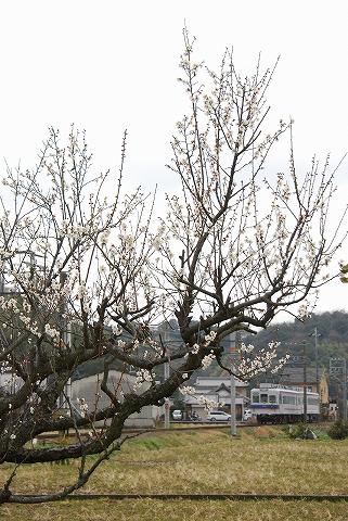 和歌山電鉄2270系@伊太祁曽'12.3.10-2