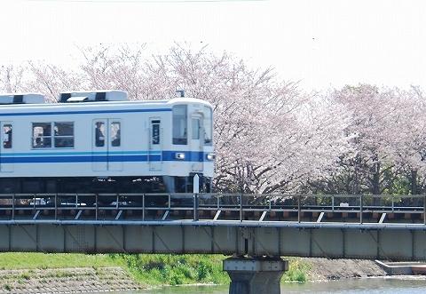 東武8000系@藤の牛島'12.4.8-2