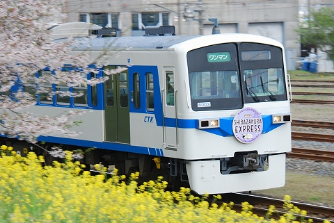 秩父6000系@ひろせ野鳥の森'12.4.15-2