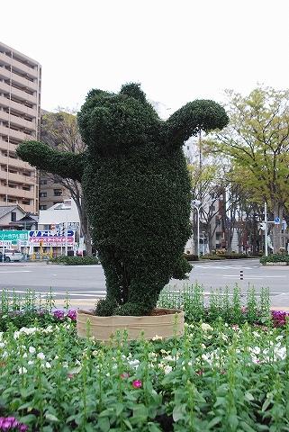 クマ@前橋'12.4.22