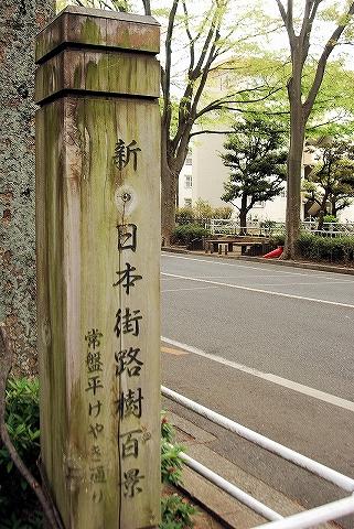 新日本街路樹百景記念碑@常盤平'13.4.19