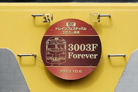 3003FHM'13.10.6