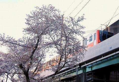 埼玉新都市交通2000系@鉄道博物館'14.4.6