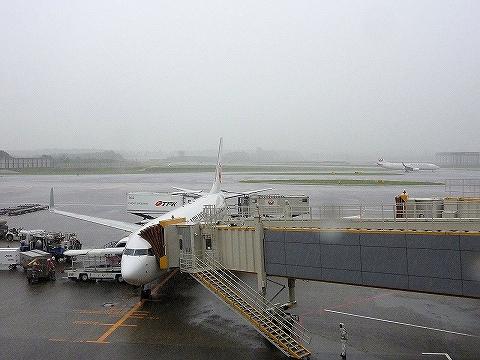 JLボーイング737@成田空港'14.9.11