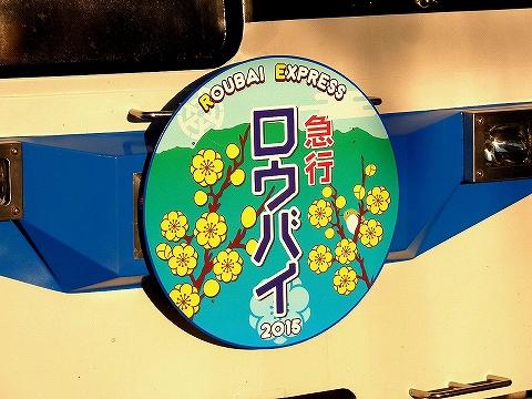 急行ロウバイ号HM'15.2.11-1