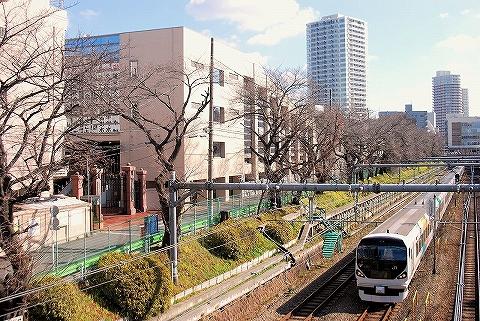 E257系@東中野'15.2.21