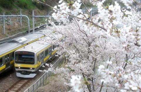 E231系@飯田橋'15.4.4