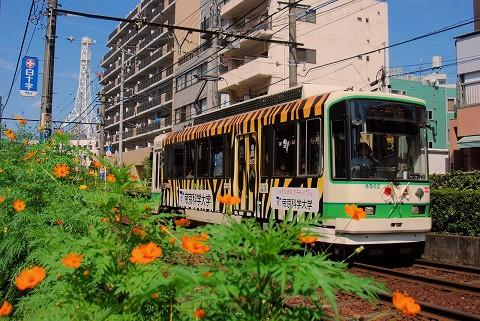 都電8500形@大塚駅前'15.9.21