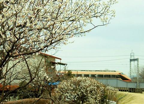 東武100系@大谷向'16.3.13