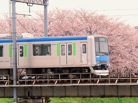 東武60000系@藤の牛島'16.4.3