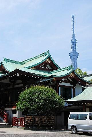 亀戸天神社'16.5.15