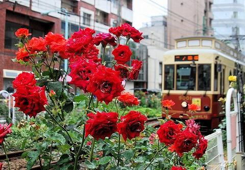 都電9000形@大塚駅前'16.5.27