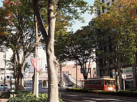 前橋駅前けやき並木通り'16.10.23