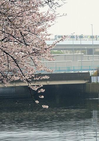 横浜シーサイドライン2000形@並木中央'17.4.8