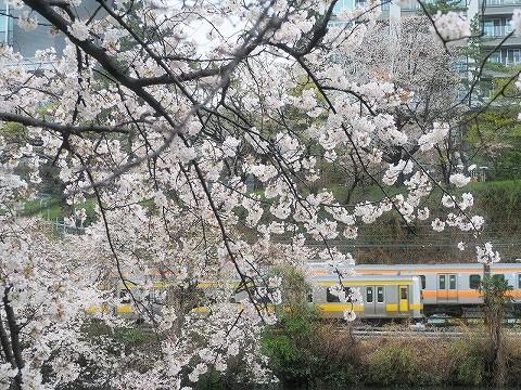 E231系@飯田橋'17.4.9