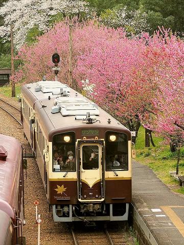 わたらせ渓谷鐡道WKT-500形@神戸'17.4.17