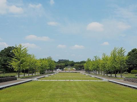 国営昭和記念公園'17.6.24