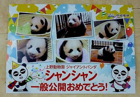 上野動物園シャンシャン公開ポスター@京成上野'17.12.28